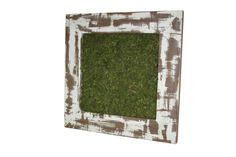 Looking for an additional planting canvas? Check out our Succulent Wall Art (Item # 00519) www.braungroup.com #succulent #flowers #container #planters #gardening #containergardening #flowers Succulent Wall Art, Horticulture, Container Gardening, Succulents, Planters, Canvas, Frame, Flowers, Check