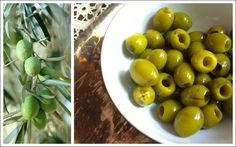 California Green Ripe Olives go through a nearly identical curing process as Black Ripe Olives. The only difference is that their tanks are not injected with air, allowing them to retain their natural green color.
