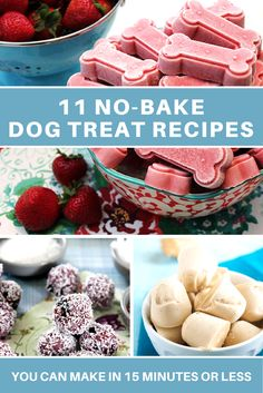 Making homemade dog treats is simple when you don't have to bake anything! Check out these 11 super easy dog treat recipes that you can make in 15 minutes or less out of common foods from your pantry.