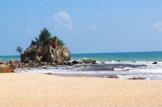 Pantai Kemasik Destinasi Santai Pantai Kemasik Destinasi Santai Pantai Kemasik Destinasi Santai. Pantai Kemasik adalah suatu destinasi tumpuan pengunjung yang menjadikannya tempat persinggahan meng...