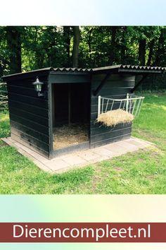 Goat Shelter, Horse Shelter, Sheep Shelter, Backyard Farming, Chickens Backyard, Goat Playground, Goat Shed, Goat House, Mini Cows