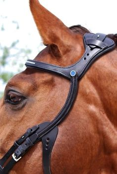 """""""This unique Stübben bridle Freedom respects your horse's anatomy and biomechanics. Grants full sight field to your horse"""""""