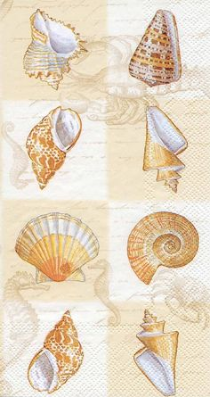 IHR Sounds of the Sea cream Seashells Marine Life Printed 3-Ply Paper Guest Towels Wholesale BF443460