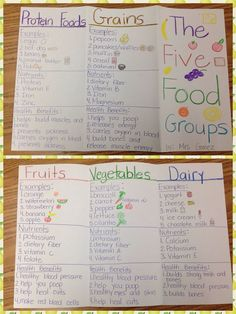 Myplate food groups foldable