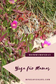 Gesundheit für Mütter Hatha Yoga, Plants, Pelvic Floor, How To Relieve Stress, Feel Better, Health, Flora, Plant