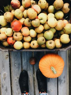 veerle ☽ Pear, Apple, Fruit, Food, Apple Fruit, Essen, Meals, Yemek, Apples