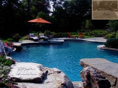Free Form Swimming Pool & Landscaping - traditional - pool - new york - by Summerset Gardens/Joe Weuste