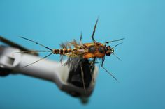 Fly Tying Nation: Foam Nation - foam fly pattern burrowing mayfly nymph.
