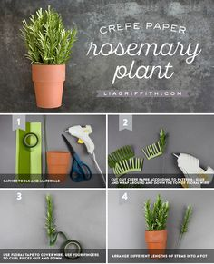 This crepe paper rosemary plant is crazy easy and beautiful. It's only 4 steps and is perfect if you're new to crepe paper crafting. Crepe Paper Flowers, Origami Flowers, Felt Flowers, Diy Flowers, Paper Peonies, Rosemary Plant, Paper Plants, Paper Flower Tutorial, Flower Crafts