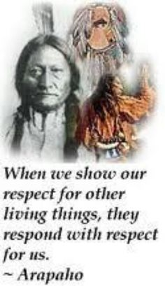 RESPECT - native american quotes and proverbs Native American Prayers, Native American Spirituality, Native American Wisdom, Native American Pictures, Native American Beauty, Native American History, American Indians, American Women, American Symbols