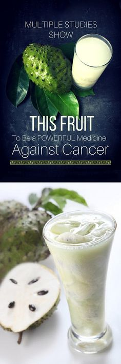 Multiple Studies Show This Fruit To Be a Powerful Medicine Against Cancer - Home Remedies-The herbal medical community has recently announced studies of Soursop. This fruit is more effective for cancer treatment than the numerous chemopreventive drugs currently on the market. It is also natural and much safer. Soursop is extremely beneficial in the fight against several forms of carcinoma. The top of the list includes lung, prostate breast, …