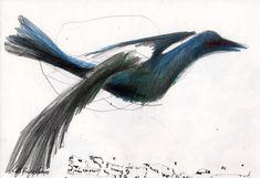 LUIS DESENHA: Vicente o corvo