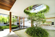 Amamos los jardines interiores