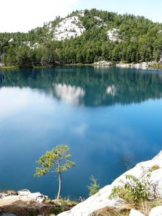Lake Topaz, Killarney Provincial Park. So clear so pretty take me back