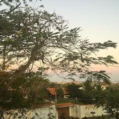 Pôr-do-sol de hoje. Pra quê filtro com essa beleza toda?! // sunset today