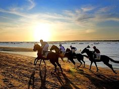 Horse racing on the beach at Sanlucar de Barrameda, Cadiz, Spain  CLXIX (169th.) edition of the famous horse races at Sanlucar de Barrameda commences today. Four races will be held for thoroughbreds and this first series of races continues until Saturday, the second series runs from 21st. to 23rd. August.  The races probably originate in the early 1800s when local horse breeders started to compete amongst themselves along these long, wide beaches. The event, declared of International Tourist…