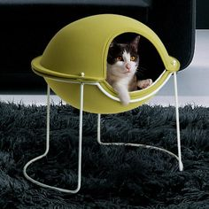 have always wanted this for my kitty. i just know he would love it. i love all these cool modern cat products