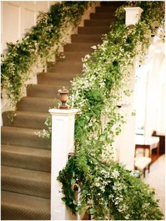 A grand staircase adorned with clematis Clematis Flower, White Clematis, Floral Wedding, Wedding Flowers, 2016 Wedding Trends, Grand Staircase, Indoor Wedding, Seattle Wedding, Belle
