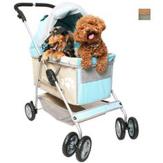 dog strollers where & when on Bark and Swagger