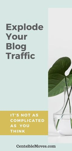 Get Pinterest Traffic to your blog in less than one month! #blogtraffic #pinteresttraffic #pinterestmarketing #growyourblog #startblog #tailwind #tailwindapp #tailwindtribes How To Start A Blog, How To Make Money, Hustle Money, Earn Extra Income, Debt Payoff, Pinterest Marketing, Earn Money, Saving Money, Budgeting