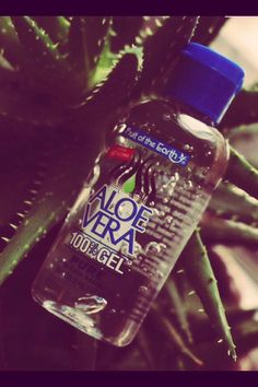 Aloe Vera An Amazing Make-up Primer And Keeps Acne In Check ❤️ #Beauty #Trusper #Tip