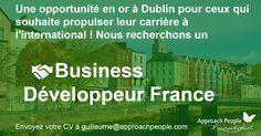 Career Opportunities, France, Job Description, Dream Job, Hui, Dublin, How To Apply, Business, People