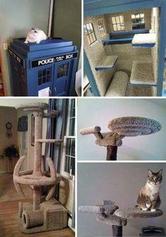 Idée pour les chats... ...