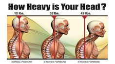 Photo: Dont get text neck! Head up, eyes forward at all times :D Neck And Back Pain, Neck Pain, Michael Jackson, Lumbar Lordosis, Jaw Pain, Neck Exercises, Back Hurts, Perfect Posture, Shoulder Muscles