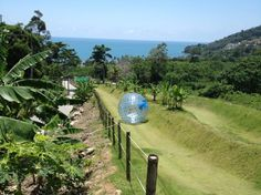 http://www.resavaholidays.com/kathu/ Roller ball Zorbing is one of the popular activities to do in Kathu, Phuket.