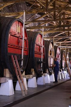 Wine Cellars | Douro | #Portugal #Dourovalley
