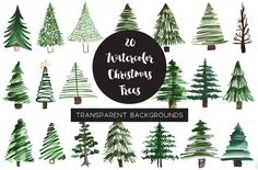 Watercolor Pine Tree Clipart by BayTheory on @creativemarket