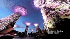 GoPro3+ and Camalapse: Best Places To Visit in Singapore Without Hurting Your Pocket Episode 1 - WATCH VIDEO HERE -> http://singaporeonlinetop.info/travel/gopro3-and-camalapse-best-places-to-visit-in-singapore-without-hurting-your-pocket-episode-1/    Enjoy Singapore without hurting your pocket. Come explore Singapore with me! 1) Gardens By The Bay (Super Trees) 2) Sentosa Island 3) Changi Airport 4) Coming Soon! Botanical Gardens/Chinese and Japanese Gardens Type in below t