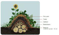 Un modèle de Butte - Permaculture
