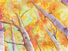 Autumn Aspens