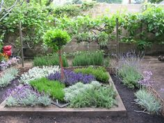 I love the layout of this herb garden, pretty!