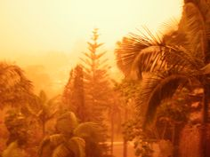 The dust storm that hit Sydney in 2009!