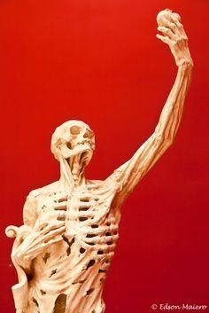 O esqueleto - estátua da tumba de René de Châlons (1519-1544) - no Museu Cité de l'Architecture em Paris