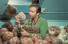 I have a pet 'tribble'  :) 'The Trouble with Tribbles' - Season 2; Episode 15