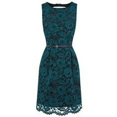 Oasis Lily Lace Dress, Green
