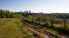 It's cold and dark outside so here's a photo of Calgary on a clear summer's day. #stayWarmYall