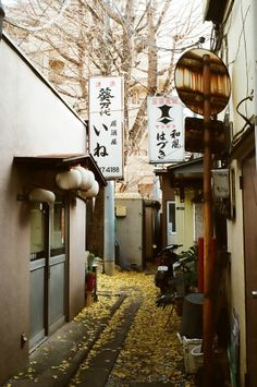 Alley in Japan (by Hisa Foto - great for get away scene Ballerina Project, All About Japan, Aesthetic Japan, Japan Street, Japanese Streets, Visit Japan, Photos Voyages, Japanese Architecture, Tokyo Japan