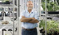 Craig Venter at Synthetic Genomics, his laboratory in La Jolla, California.    Photograph: Mark Mahaney/Redux /Eyevine