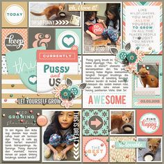 Layout by swastinadia Pocket Starts: Flourish Edition Collection by Tickled Pink Studio 365Unscripted: Stitched Grids 6 by Traci Reed #sweetshoppedesigns #digitalscrapbooking #pocketscrapbooking #projectlife #pets
