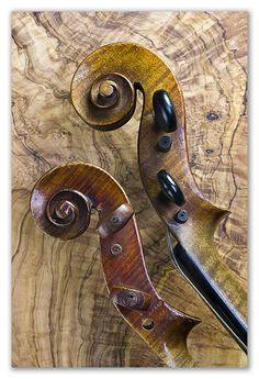Broken Violins | Brian | Flickr