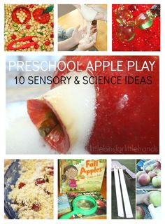 10 Best Preschool Fall Apple Activities. Science activities, sensory play ideas, fine motor skills and more with quick and easy Fall apple activities for home or classroom. Hands on learning with an apple theme.