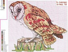 Barn Owl, Counted Crosstitch