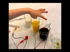 Making music using fruits and juices and makey makey