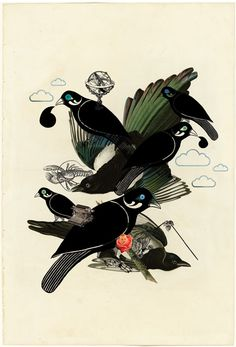 thieving-magpies