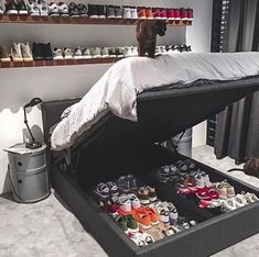 Sneaker Storage Goals 😍That is a collection! Sneaker Storage, Hypebeast Room, Shoe Room, Room Setup, Dream Rooms, New Room, Bedroom Decor, Bedroom Ideas, Master Bedroom