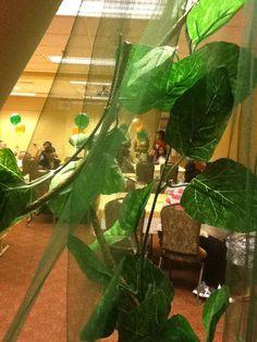 Photographer available!! I Manage & U Party!!! Events!! By F.E.M.  Filion's Event Management filionsmgmt@gmail.com